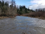 Salmon Creek