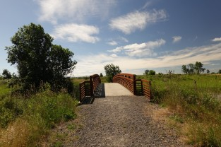Bridge Over Slough