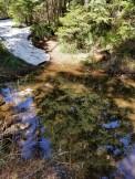 Deep Pool on Trail