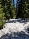 Deep Snow at 3800+ Feet