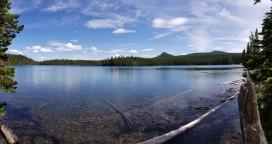 Charlton Lake (Custom)