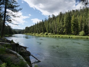 Deschutes River #1