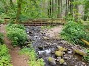PCT Bridge over Dry Creek (Custom)