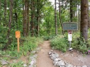 Southbound PCT TH from Cascade Locks (Custom)