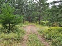 Backroads near Tracy Hill