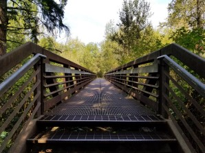 Bridge over Mt. Scott Creek