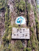PCT Intersection at Panther Creek (Custom)
