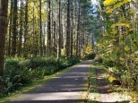 Banks-Vernonia Trail (Medium)