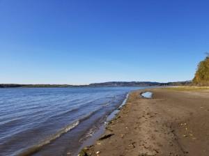 Cottonwood Beach (Medium)