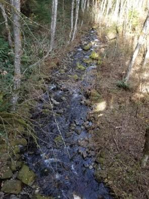 Hardy Creek from Equestrian Bridge