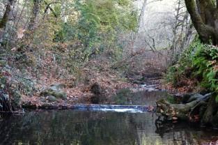 Mill Creek 1 (Custom)