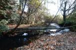 Mill Creek 2 (Custom)