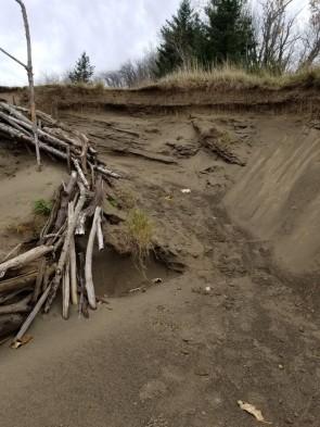 Path from beach to ridge (Custom)