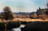 Salmon Creek with Mt. Hood in background (Custom)