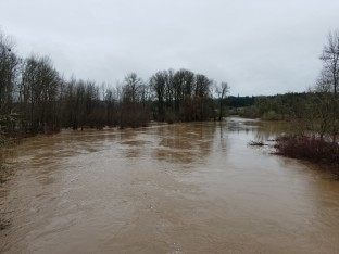 Chehalis River Flood Stage