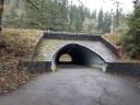 Tunnel under highway