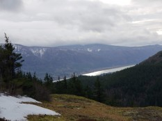 Columbia River Gorge from Hamilton Mt. Saddle