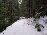 Snow Covered Backroad (Custom)