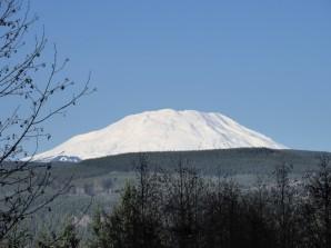 Mt. St. Helens (Custom)