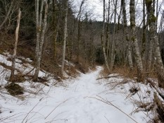 Upper Hardy Creek Trail (Custom)